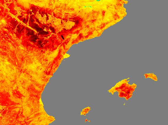 Ola de calor en España