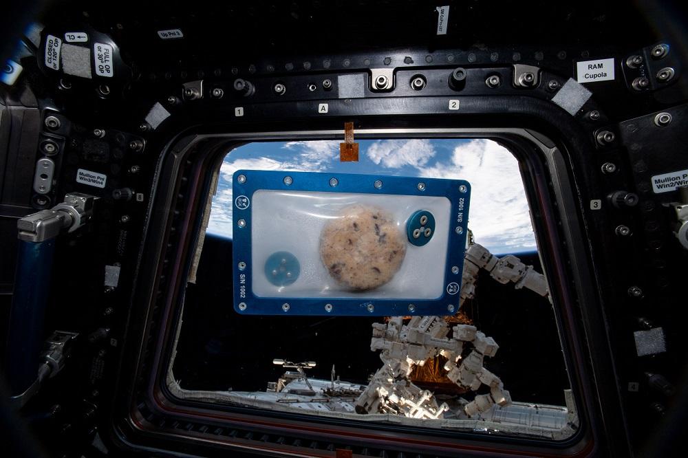 Galleta horneada en el espacio
